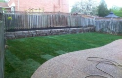 landscape-design-build-experts (6)